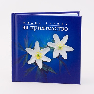 Book 12x12 priatelstvo 7